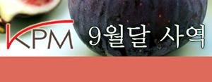2013 KPM 9월달 사역